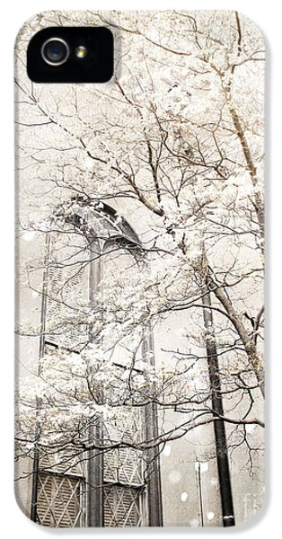 Surreal Dreamy Winter White Church Trees IPhone 5 Case