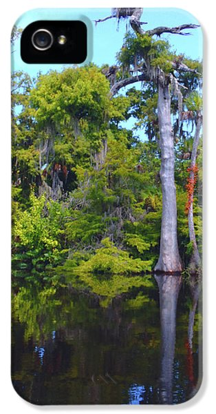 Osprey iPhone 5 Case - Swamp Land by Carey Chen