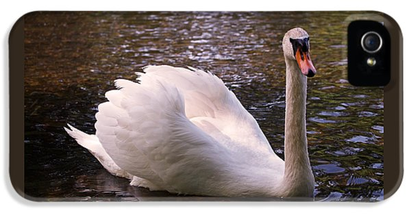 Swan Pose IPhone 5 Case by Rona Black