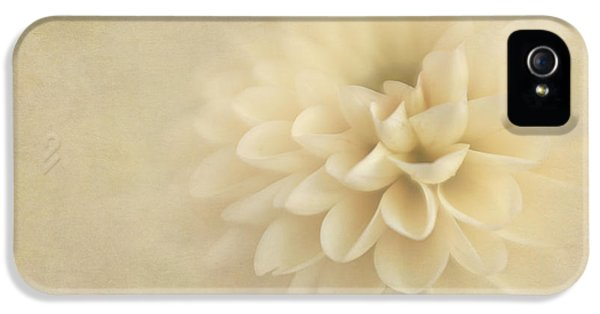 Sweet Dahlia Dreams IPhone 5 Case by David and Carol Kelly