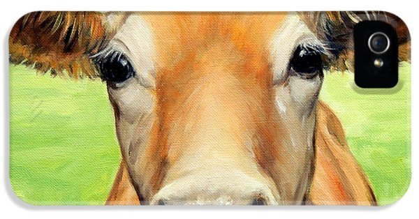 Cow iPhone 5 Case - Sweet Jersey Cow In Green Grass by Dottie Dracos