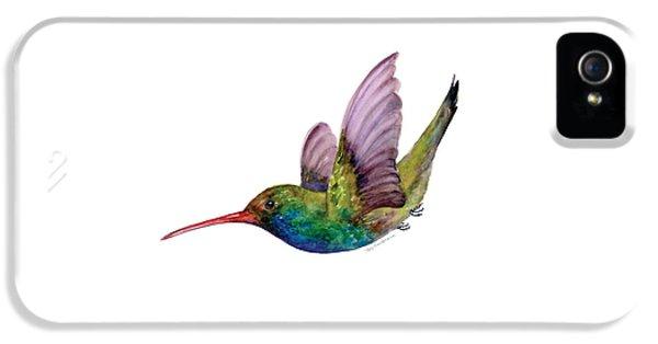 Swooping Broad Billed Hummingbird IPhone 5 Case by Amy Kirkpatrick