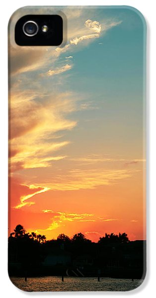 Tangerine Dream IPhone 5 Case by Laura Fasulo