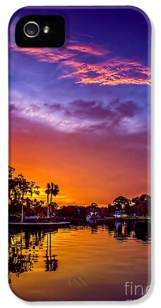 Tarpon Springs Glow IPhone 5 Case