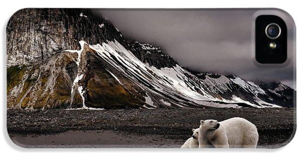 Bear iPhone 5 Case - Tenderness by Mathilde Collot