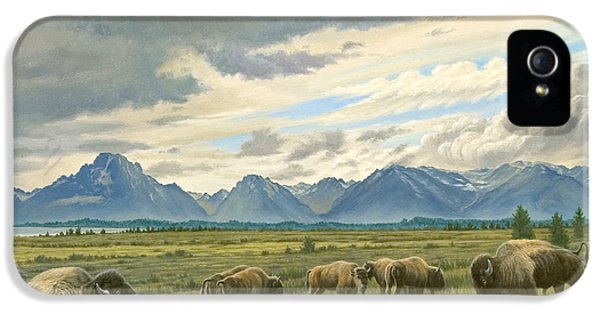 Tetons-buffalo  IPhone 5 Case by Paul Krapf