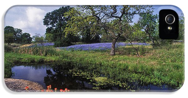 Bluebonnets iPhone 5 Case - Texas Hill Country - Fs000056 by Daniel Dempster