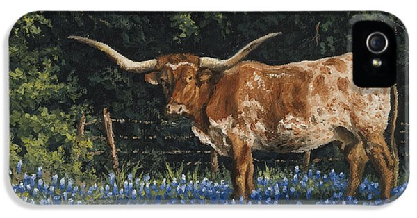 Bluebonnets iPhone 5 Case - Texas Traditions by Kyle Wood