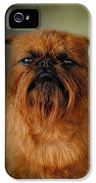 The Brussels Griffon IPhone 5 Case by Jai Johnson