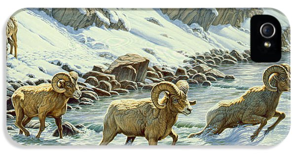 The Crossing - Bighorn IPhone 5 Case by Paul Krapf