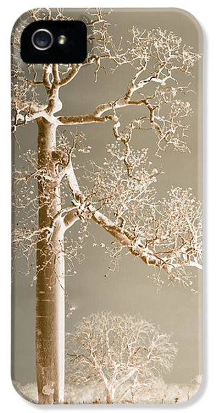 iPhone 5 Case - The Dreaming Tree by Holly Kempe