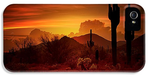 The Essence Of The Southwest IPhone 5 Case
