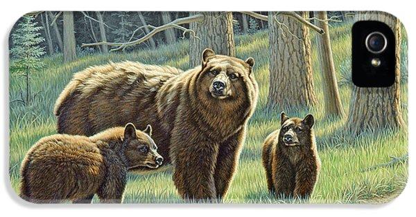 Bear iPhone 5 Case - The Family - Black Bears by Paul Krapf