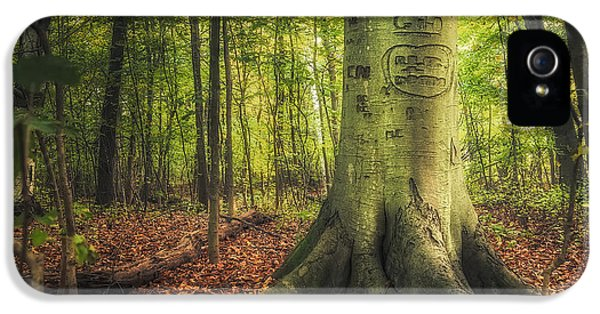 The Giving Tree IPhone 5 / 5s Case by Scott Norris