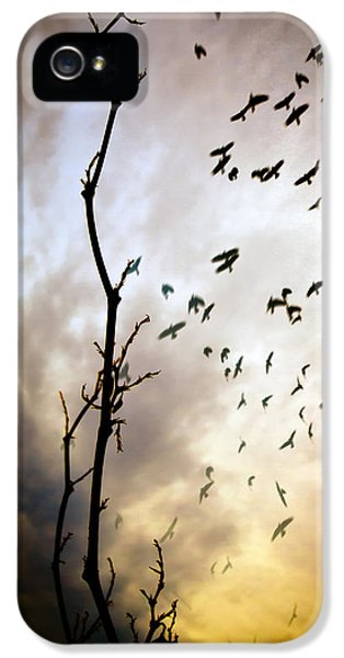 The Gods Laugh When The Winter Crows Fly IPhone 5 Case by Bob Orsillo