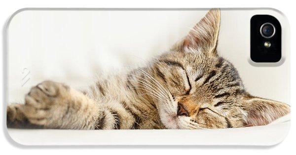 The Happy Kitten IPhone 5 Case by Roeselien Raimond