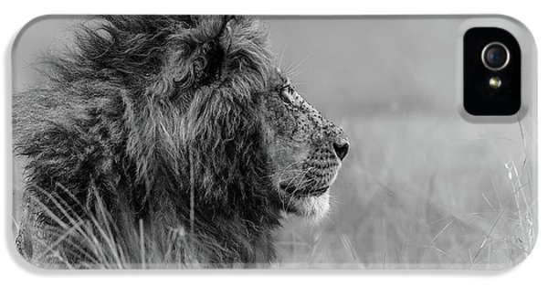 The King Is Alone IPhone 5 Case