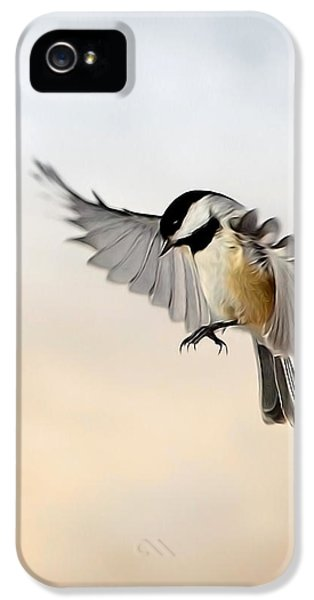 The Landing IPhone 5 / 5s Case by Bill Wakeley