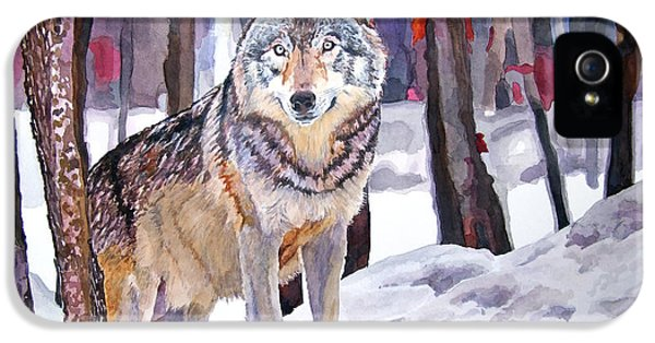 Wolves iPhone 5 Case - The Lone Wolf by David Lloyd Glover