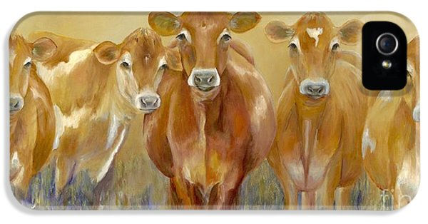 The Morning Moo IPhone 5 Case by Catherine Davis