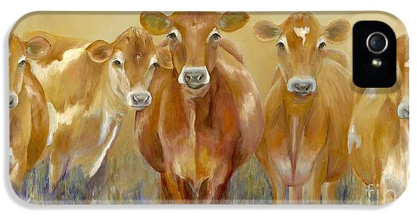 Cow iPhone 5 Case - The Morning Moo by Catherine Davis