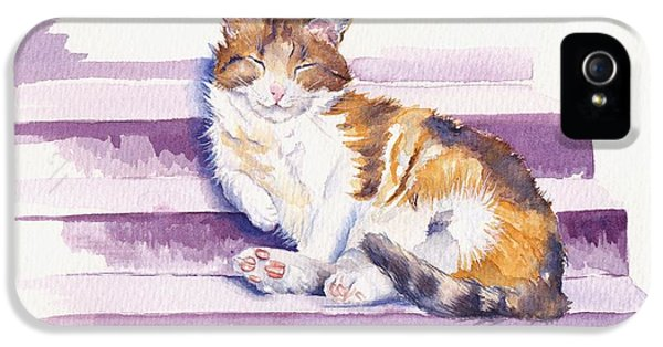 Cat iPhone 5 Case - The Naughty Step by Debra Hall