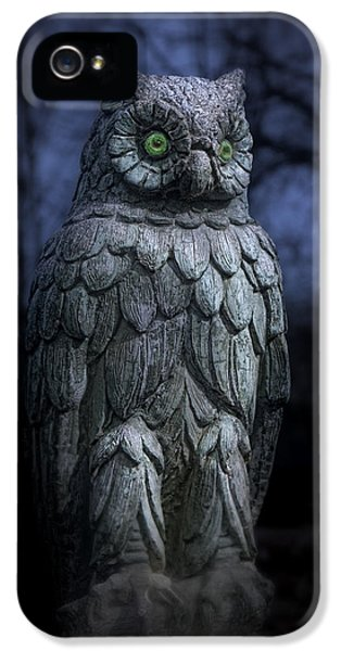 The Owl IPhone 5 Case by Tom Mc Nemar