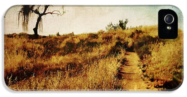 The Secret Pathway To Aspiration IPhone 5 Case by Brett Pfister