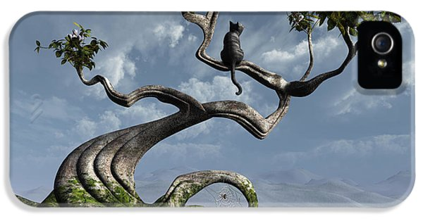 The Sitting Tree IPhone 5 Case by Cynthia Decker