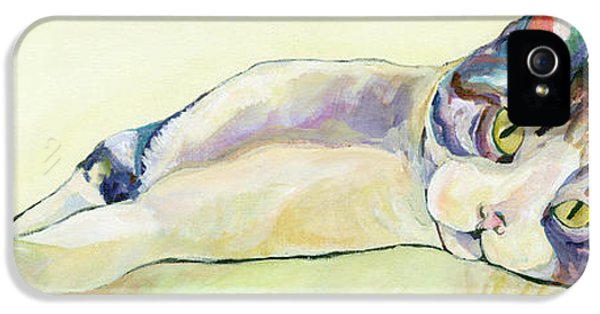 Cat iPhone 5 Case - The Sunbather by Pat Saunders-White