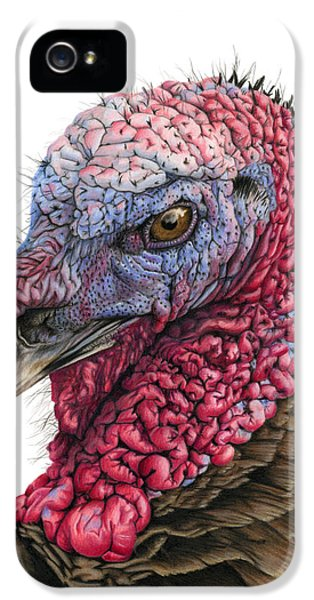 The Turkey IPhone 5 / 5s Case by Sarah Batalka