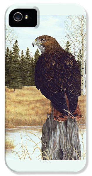 The Watchful Eye IPhone 5 Case by Rick Bainbridge