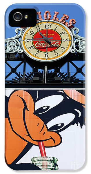 Thirsty Oriole IPhone 5 / 5s Case by James Brunker