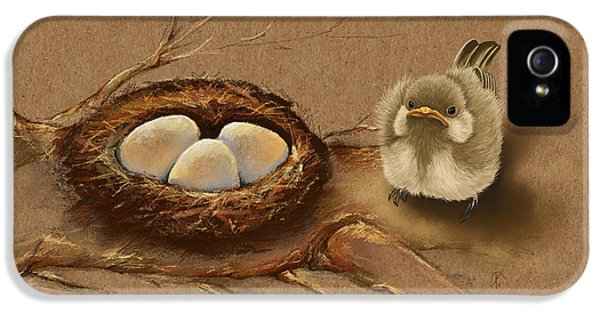 This Is My Nest? IPhone 5 Case by Veronica Minozzi