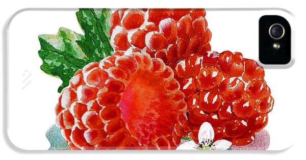 Three Happy Raspberries IPhone 5 Case by Irina Sztukowski