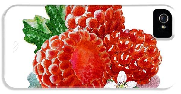 Three Happy Raspberries IPhone 5 / 5s Case by Irina Sztukowski