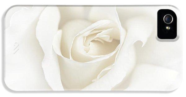 Misty Ivory White Rose Flower IPhone 5 Case by Jennie Marie Schell