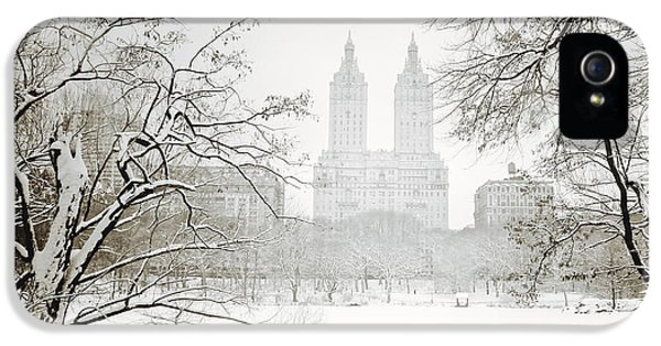 Through Winter Trees - Central Park - New York City IPhone 5 Case