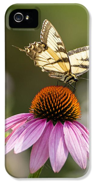 Tiger Striped Butterfly Vertical IPhone 5 Case by Photographic Arts And Design Studio