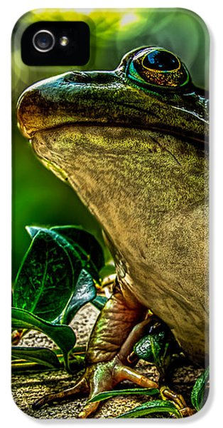 Time Spent With The Frog IPhone 5 Case