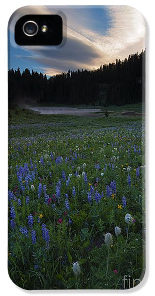 Tipsoo Sunrise IPhone 5 Case by Mike  Dawson