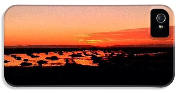 iPhone 5 Case - Tonight's Sunset, Sacramento, Ca by Paul Wallingford
