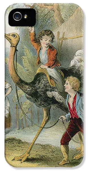 Ostrich iPhone 5 Case - Training The Ostrich by English School