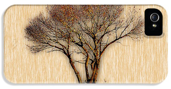 Tree Art. IPhone 5 Case by Marvin Blaine