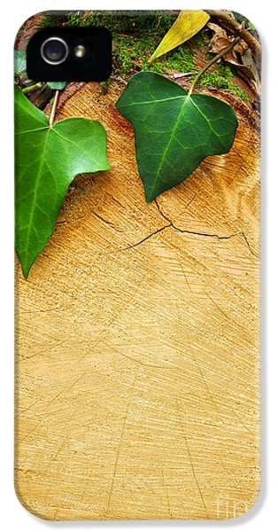 Tree Background IPhone 5 Case by Carlos Caetano