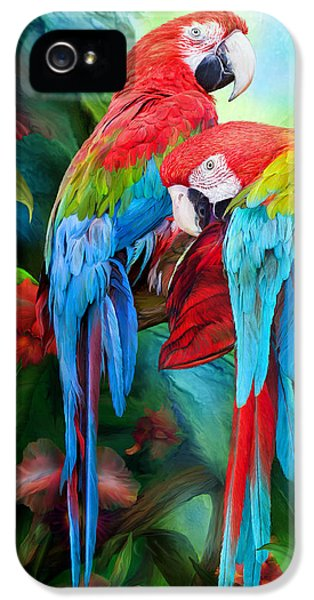 Macaw iPhone 5 Case - Tropic Spirits - Macaws by Carol Cavalaris
