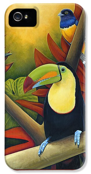 Toucan iPhone 5 Case - Tropical Birds by Nathan Miller