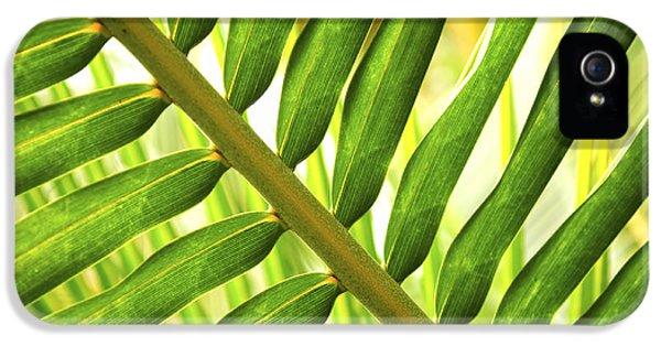 Tropical Leaf IPhone 5 Case by Elena Elisseeva