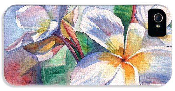 Tropical Plumeria Flowers IPhone 5 Case