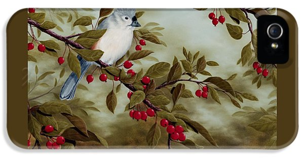 Tufted Titmouse IPhone 5 Case by Rick Bainbridge